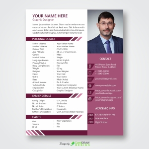 Resume Biodata Templates Specially for Marriage