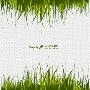 Green Grass Border With Transparent Background Vector