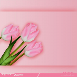 Tulips On Pink Background Flat Lay View Free Vector